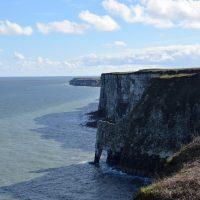 Bempton Cliffs RSPB | northolmefiley.com